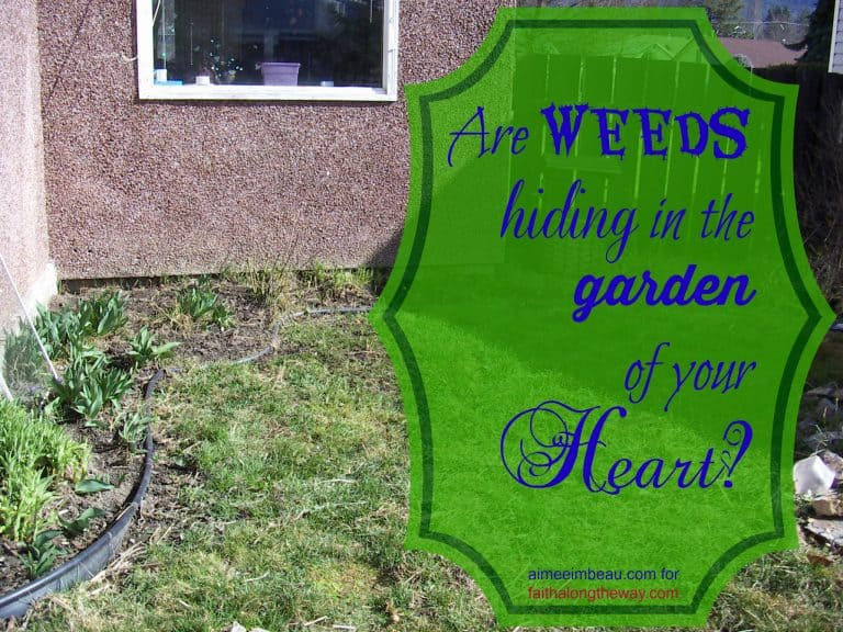 Are Weeds Hiding in the Garden of Your Heart?